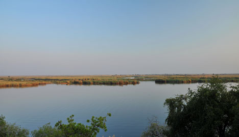 Chobe River from hotel room